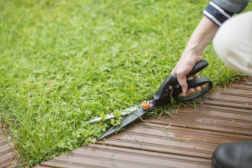 ножиці садові ціна